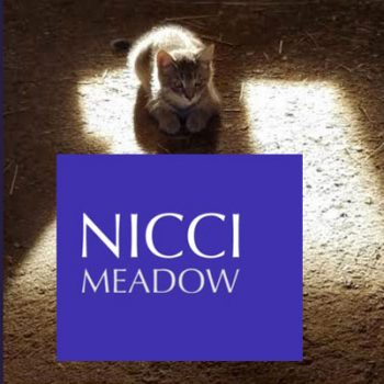 Niccci Meadow